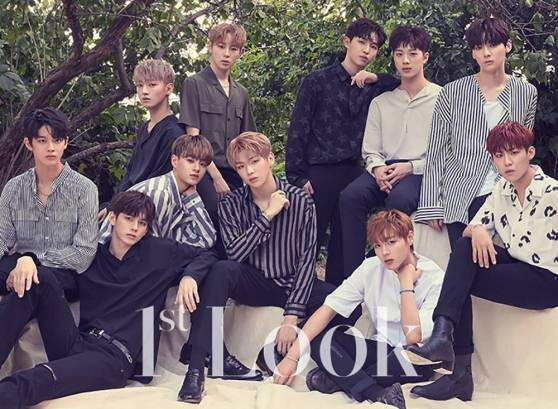 wanna one first look